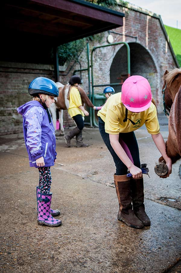 Own A Pony Day At Fort Widley Equestrian Centre